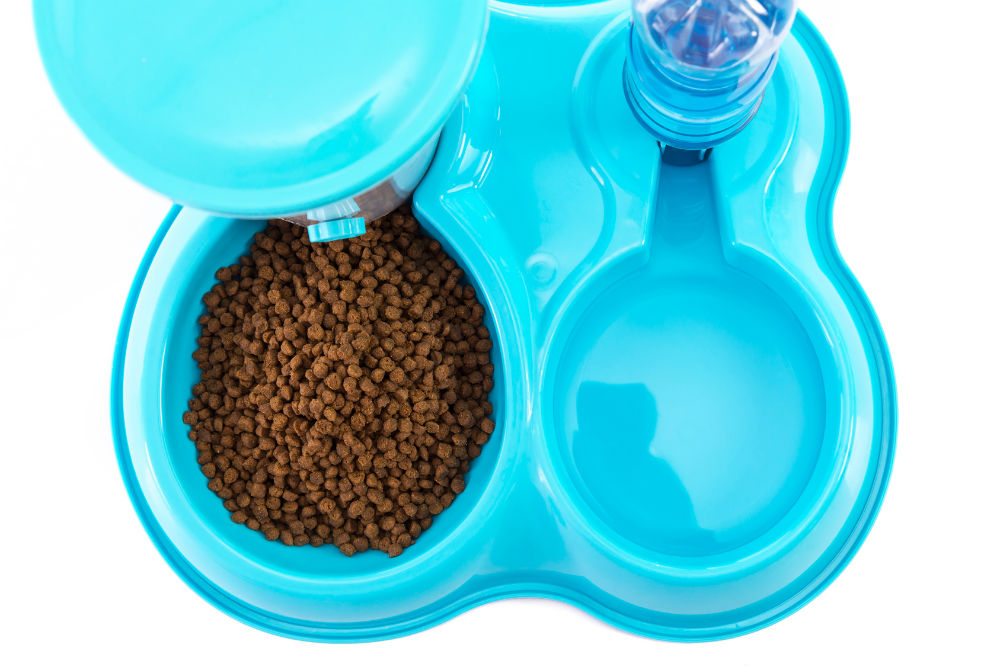 All About Cat Feeding System