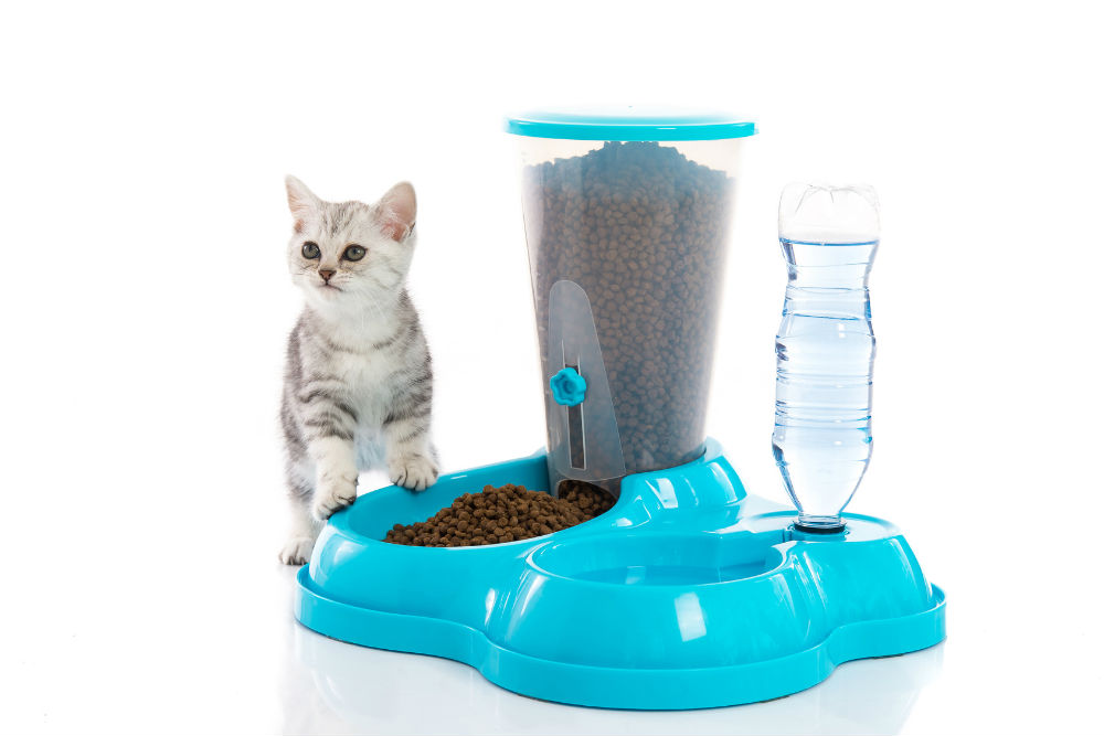 How Do Automatic Pet Feeders Work?